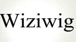 The WiZiWiG
